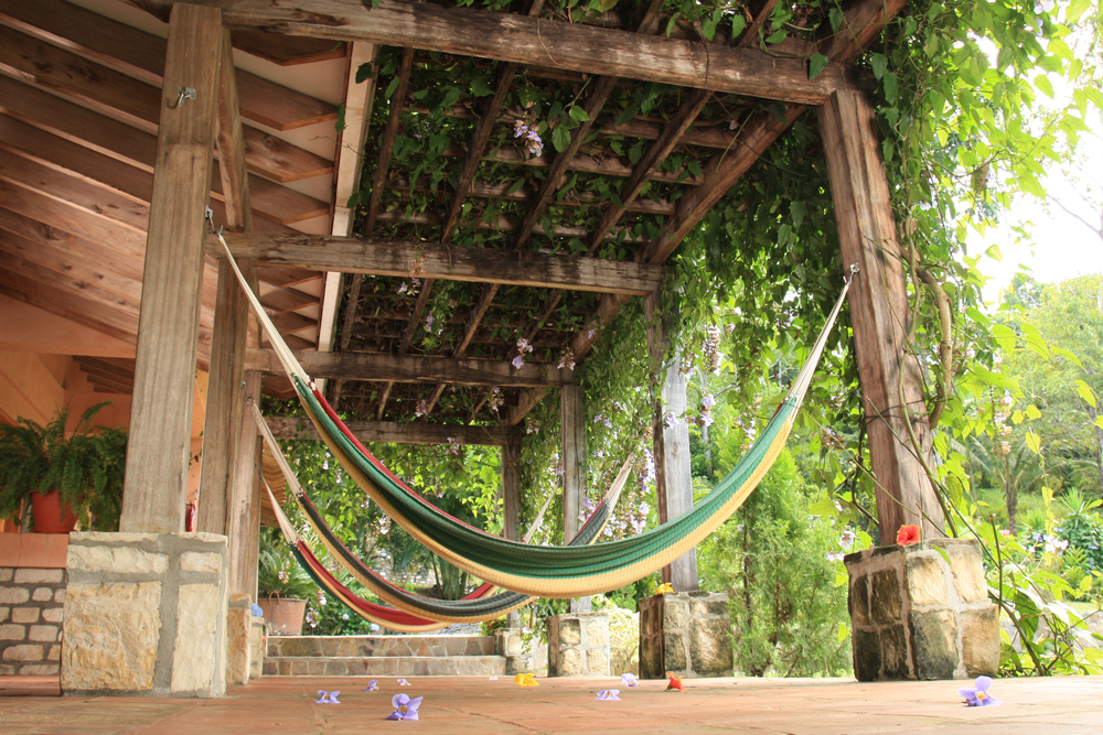 Actividades cerca de La Villa de Soledad