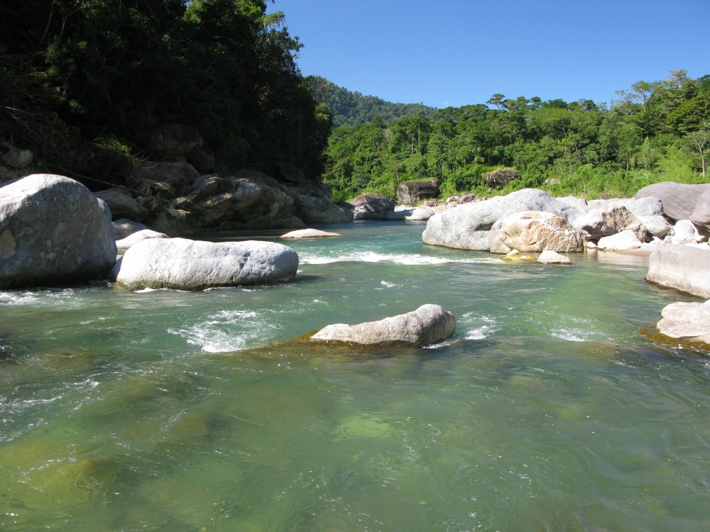 one of the things you must do in Roatan is a visit to the Cangrejal River Valley on the mainland.