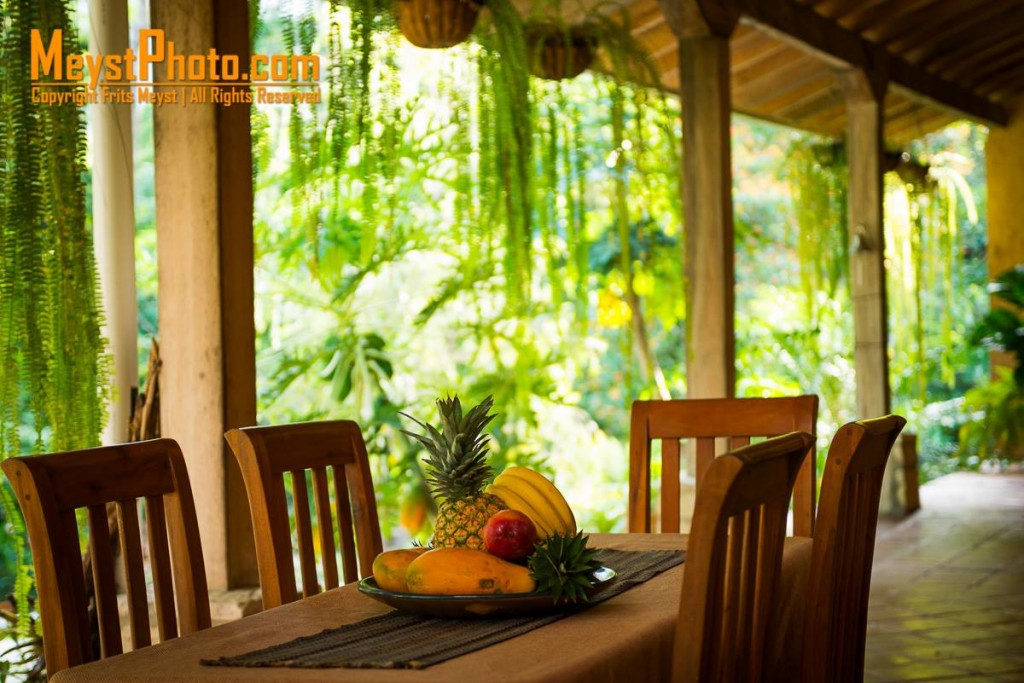 The great outdoors is just a step away from the rural inns in Central America. Certainly the best option for homestays in La Ceiba!