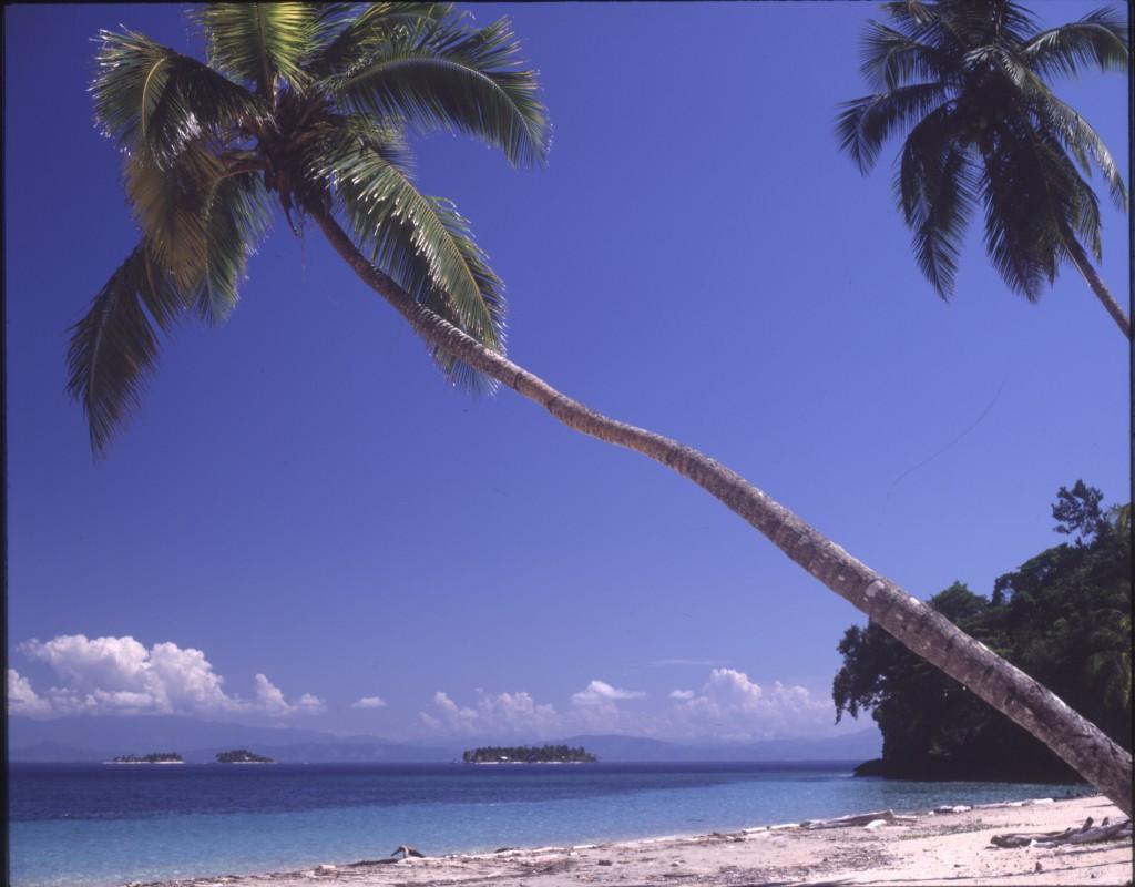La Ceiba the Hub for the Bay Islands of Honduras